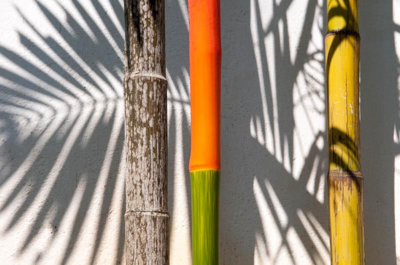 Bamboo 1845