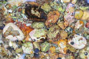 Isle of Skye Rock Pool 2921