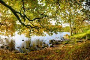 Loughrigg Tarn 3385