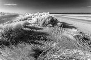 Wells-next-the-Sea, Sand Dunes 4035