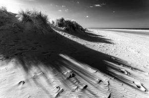 Wells-next-the-Sea, Sand Dunes 4036
