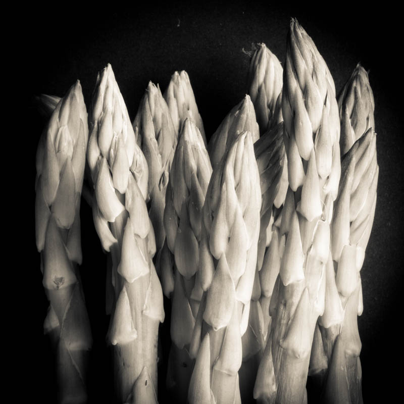 Black and White Asparagus