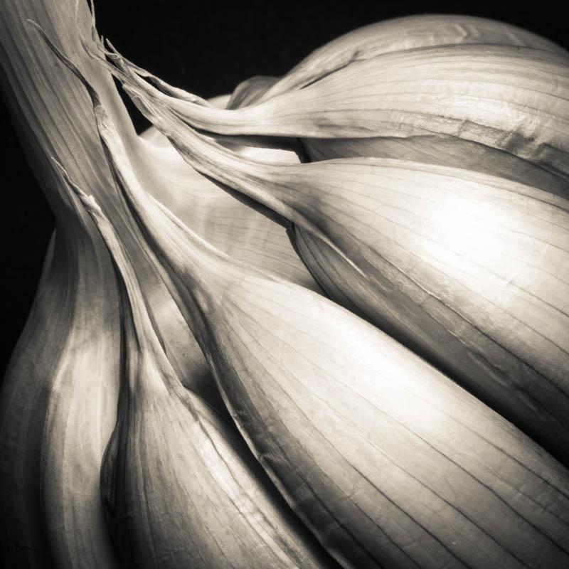 Black and White Garlic