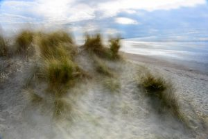 Sand Dunes at West Wittering 4996 Greetings Card