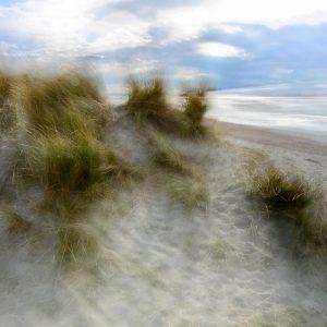 West Wittering, sand dunes 4996