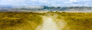 West Wittering, path through the dunes 4997PAN