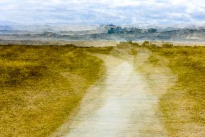 Path through the dunes at West Wittering at West Wittering 4997 Greetings Card