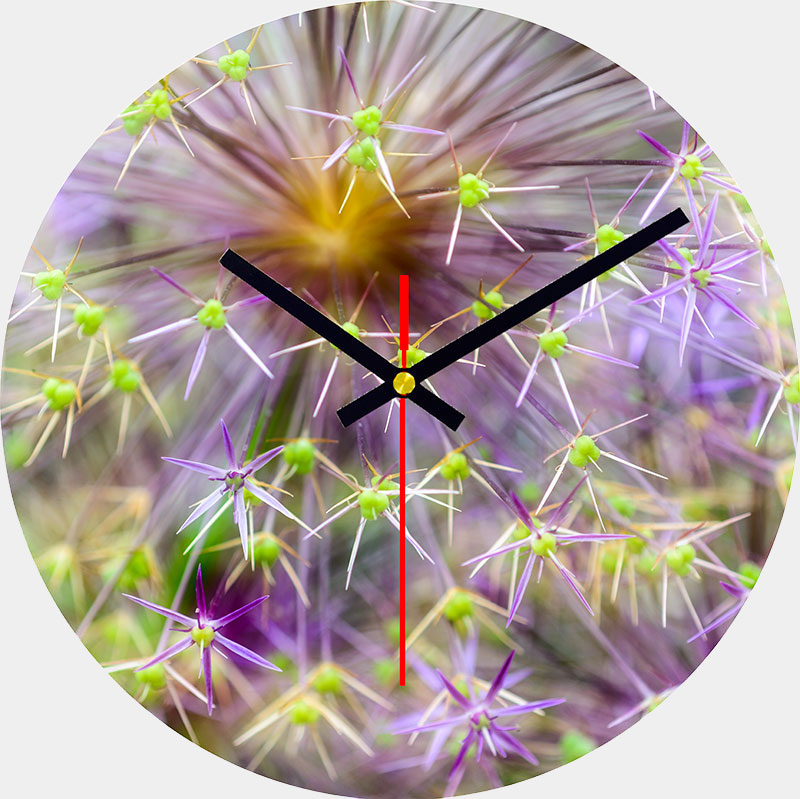 Allium Glass Wall Clock