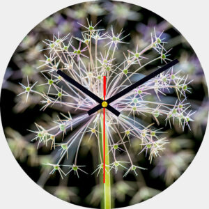 Allium Glass Wall Clock