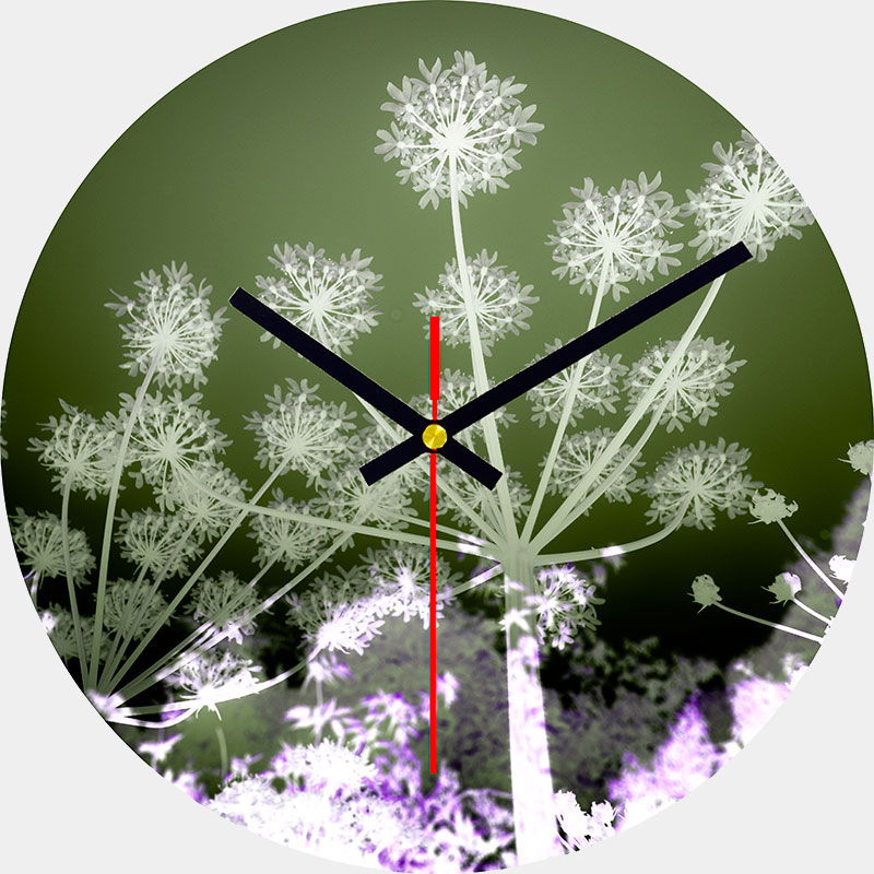 Hogweed Glass Wall Clock