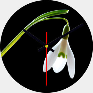 Snowdrop Glass Wall Clock